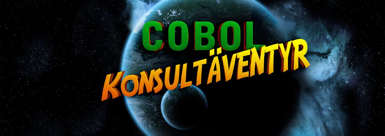 COBOL-Konsulter